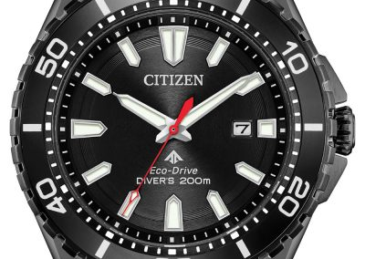 citizen-watch-2